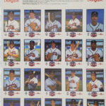 LJTP 100.081.002 - Dubuque Plumpbers - Atlanta Braves Team - 1990