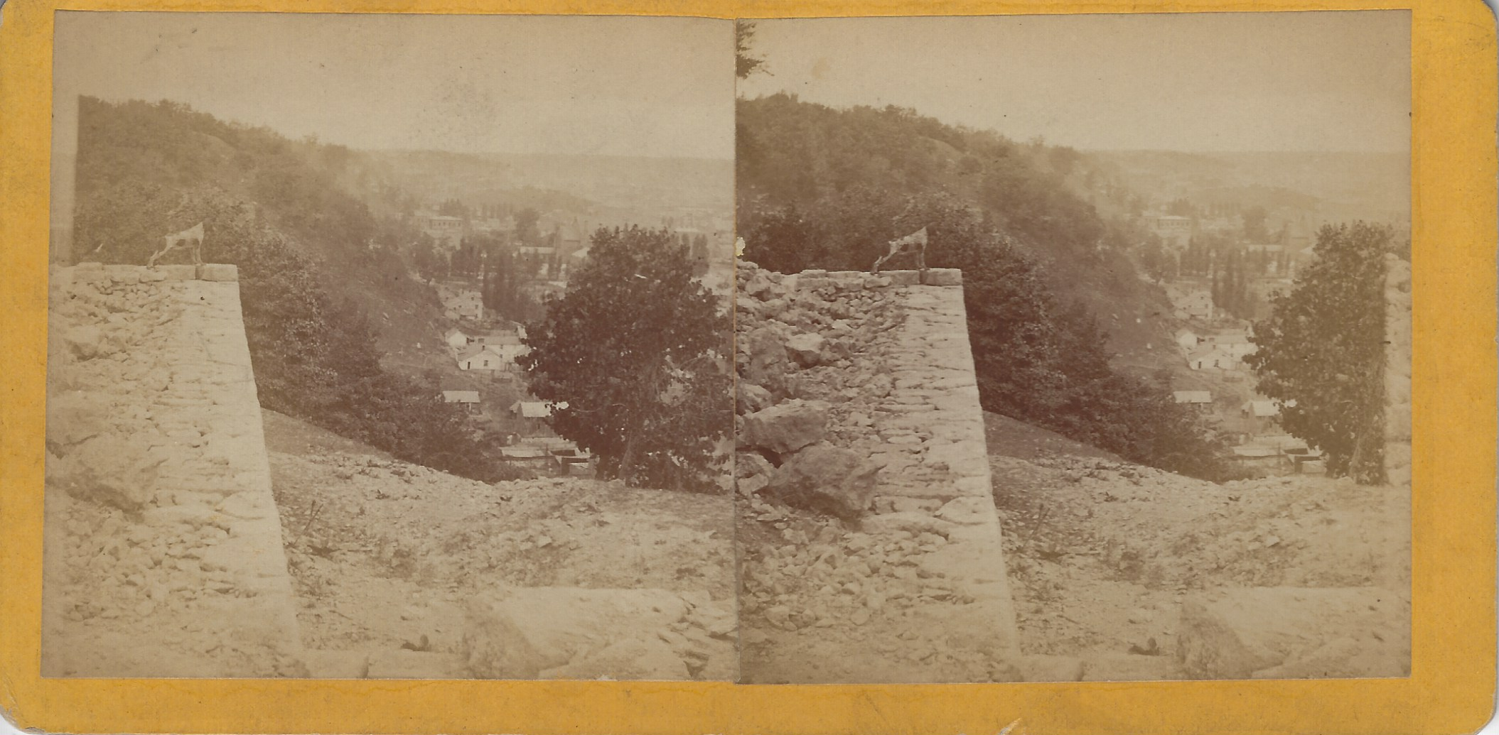 LJTP 100.255 - S. Root - Potter Hill looking North with Dog - c1870