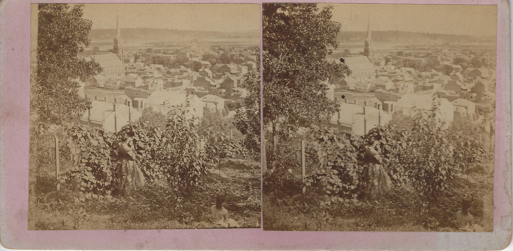 LJTP 100.298 - S. Root - Looking south from Seminary HIll - c1880